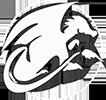 Логотип азиатский дракон
